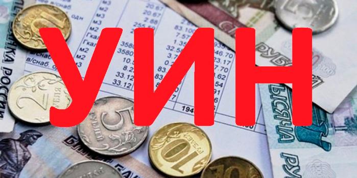Что такое УИН в квитанции на оплату налога и где его брать